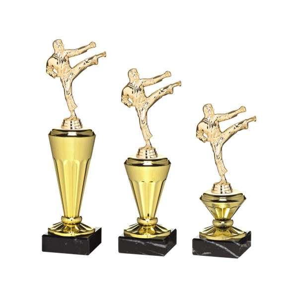 https://www.tropheesdiffusion.com/10115-thickbox_default/trophes-karate-b-x701s-b-x702s-b-x703s.jpg