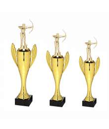 Trophée Sport Tir à l'arc Homme B-X721.01S.D25 - B-X722.01S.D25 - B-X723.01S.D25