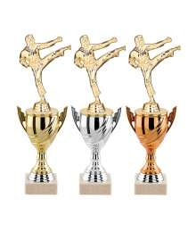 Trophees KARATE T-3852.S - T-3853.S - T-3854.