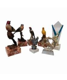 Lot de 7 trophées ornithologiques