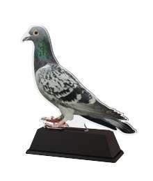 Trophée Acrylique EXCLUSIVITE Pigeon - BA-FA210A-M14