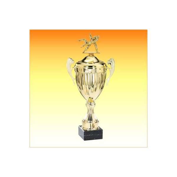https://www.tropheesdiffusion.com/4680-thickbox_default/coupe-ligne-classique-f-6412co12s-f-6413co14s-f-6414co16s-f-6415co18s-f-6416co20s-judo.jpg