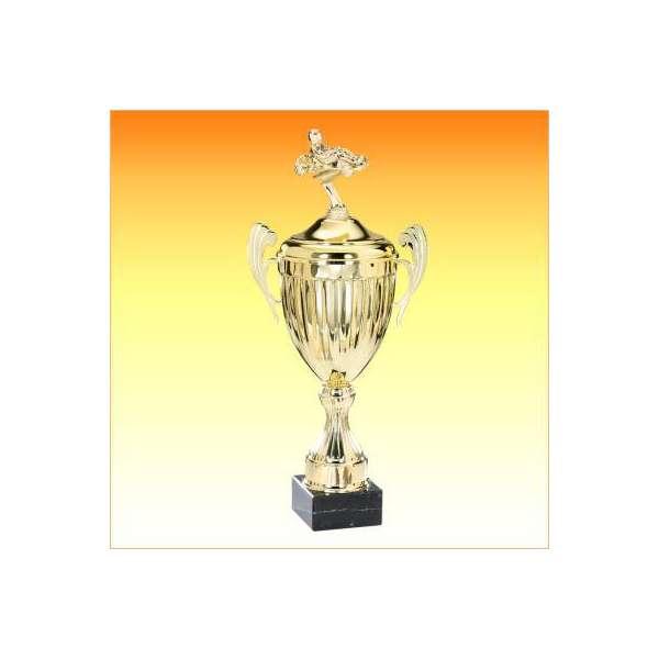 https://www.tropheesdiffusion.com/4799-thickbox_default/coupe-ligne-classique-f-6412co12s-f-6413co14s-f-6414co16s-f-6415co18s-f-6416co20s-karting.jpg