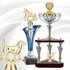 Récompenses Canines