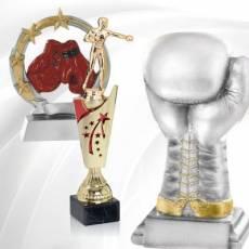 Récompenses Sportives Boxe