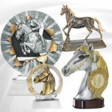 Récompenses Sportives Equitation