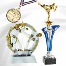 Récompenses Sportives Karaté