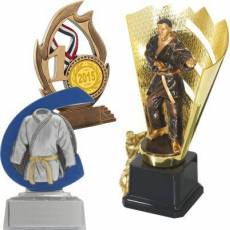 Trophées Karaté