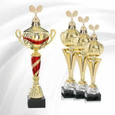 Coupes Badminton